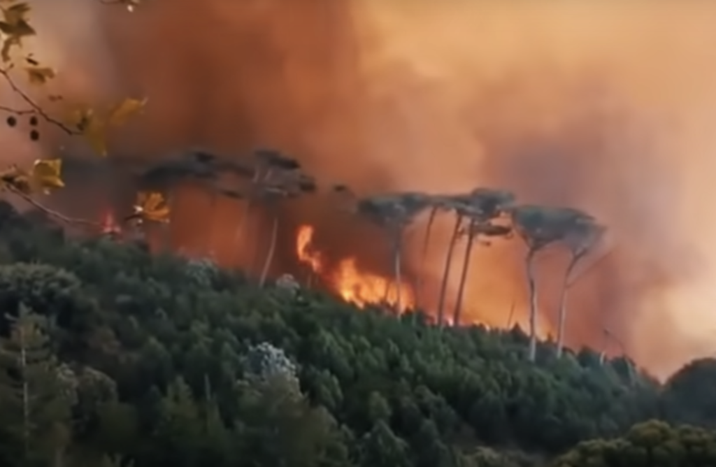 Cape Town residents urged to prepare for a never-before-seen fire season
