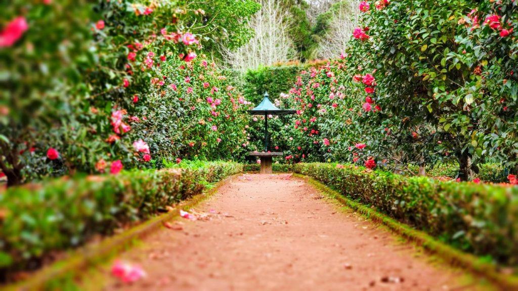 Your ultimate guide to celebrating Garden Week Stellenbosch