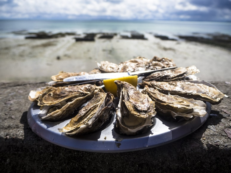 Experience the finer things in life at the Cape Town Oyster Festival