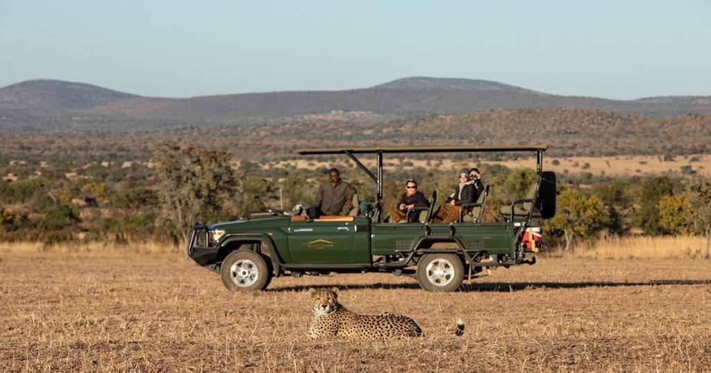 Luxury and nature at your fingertips with Safari Plains
